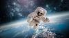 """Anunțul făcut de NASA: """"Vom dezvălui totul pe internet!"""""""