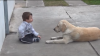 NO COMMENT: Ce face o căţeluşă atunci când vede un copil cu sindromul Down (VIDEO)