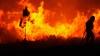 PUBLIKA WORLD. Peste 600 de hectare de vegetaţie, distruse de flăcări în Galicia (VIDEO)
