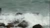 Furtună de gradul 4 pe litoralul din România. Turiștii nu au voie să intre în mare