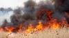 RECORD TRIST ÎN PORTUGALIA. Incendiile au devastat 442 de mii de hectare de vegetație