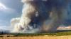 Incendiile de vegetație fac ravagii în Statele Unite. Mii de hectare au fost pârjolite