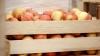 Fructe și legume în grădinițe. Ministerul Agriculturii a lansat o campanie de promovare a produselor autohtone
