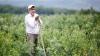 Veste bună pentru agricultori! Când vor putea depune dosarele pentru subvenţionarea investiţiilor