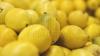 În plină vară, preţul lămâilor S-A TRIPLAT! Agenţii economici explică această majorare