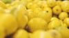 ADEVĂRATUL MOTIV al scumpirii lămâilor. Când va scădea preţul fructelor