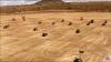 INCREDIBIL! Fermierii din Spania au jucat şah cu... tractoare (VIDEO VIRAL)