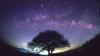 Eveniment astronomic SPECTACULOS! Află când poate fi văzută ploaia de stele