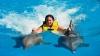 Motive de ceartă în Hawaii. Înotul cu delfini ar putea fi interzis