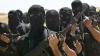 Germania: Turcia oferă SPRIJIN grupărilor ISLAMISTE