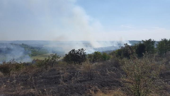 Incendiu de vegetaţie la Sângera. La faţa locului s-au deplasat pompierii