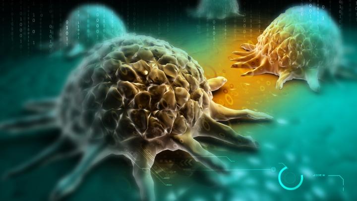 Celulele canceroase și-ar trage energia din lipide, grăsimi aflate la baza alimentației