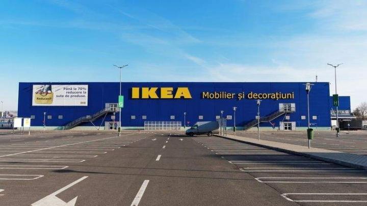 Ikea cumpără noi păduri în România