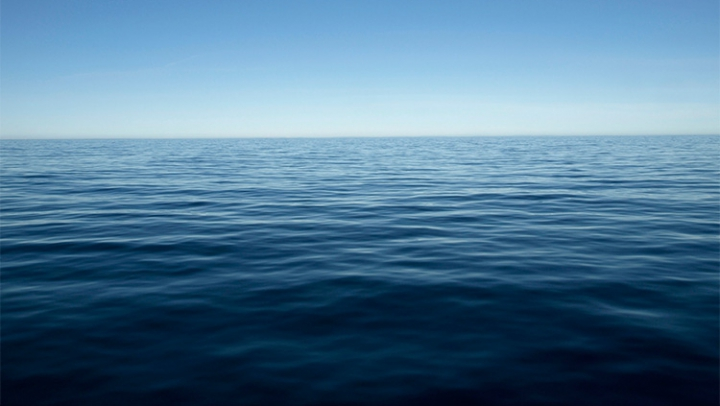 Daune ecologice în Oceanul Pacific din cauza unei devărsări de petrol