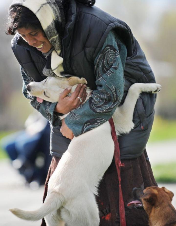 Ziua Internaţională a Câinelui. Imagini EMOȚIONANTE care redau legătura dintre om şi prietenul său patruped (FOTO)