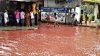 TRADIŢIE! Șuvoaie de sânge au curs prin capitala Bangladeshului