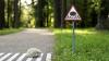 Ce drăguţ! În capitala Lituaniei au fost instalate marcaje rutiere pentru fraţii noştri mai mici (FOTO)