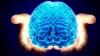 SPECTACULOS! Cum arată cea mai complexă hartă a creierului uman