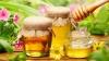 BINE DE ŞTIUT! Cum să deosebeşti mierea naturală de cea falsificată