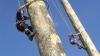 AMUZANT: Zeci de sportivi s-au întrecut în cadrul Campionatului Mondial de căţărat pe stâlpi (VIDEO)