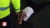 """""""Am alunecat şi am făcut chipeş!"""" SCANDAL cu pază şi cu poliţie la un supermarket din Capitală (VIDEO)"""