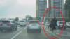 SCENE INCREDIBILE în trafic! Un bărbat călare pe un struţ GONEŞTE printre maşini (VIDEO)