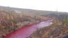 FENOMEN CIUDAT într-un oraş rusesc. Un fluviu a devenit ROȘU SÂNGERIU. Care e motivul