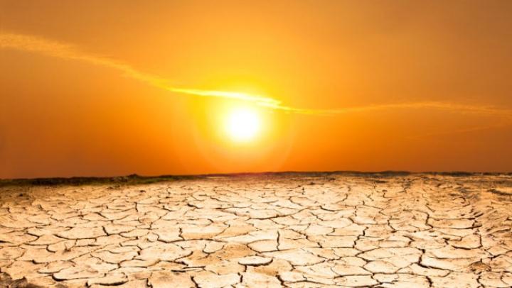 ONU: August și iulie 2016, cele mai călduroase două luni înregistrate vreodată