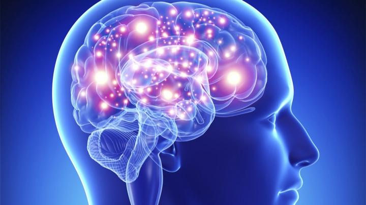 Cele mai bune alimente pentru un creier sănătos. Ce trebuie să mănânci ca să-ţi creşti inteligenţa