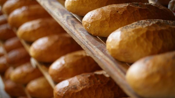 DEZGUSTĂTOR! O femeie din Făleşti a găsit un ŞOARECE USCAT într-o pâine (FOTO)