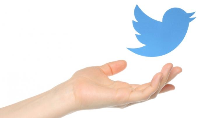 Compania Twitter ar putea fi cumpărată de gigantul american Disney