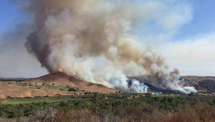 Incendiile de pădure continuă să facă ravagii în Portugalia și Spania. Mii de pompieri luptă cu focurile