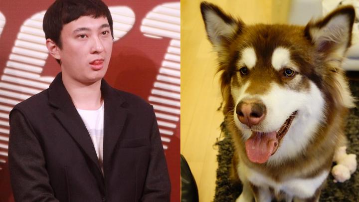 GREU DE CREZUT! Un miliardar i-a cumpărat câinelui său OPT telefoane iPhone 7 (FOTO)
