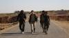 Rebelii sirieni, ajutați de Ankara, au preluat controlul orașului Dabiq