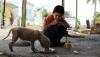 AMENZI de până la 3.000 euro pentru hrănirea animalelor pe stradă într-un oraș de pe insula Mallorca