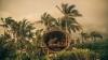 Aşa ceva nu ai mai văzut. Cum arată o casuţă din copac pentru bogaţi (FOTO)
