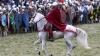 Peste o mie de britanici au sărbătorit aniversarea a 950 de ani de la bătălia de la Hastings
