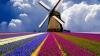 Olanda a prezentat un ''aspirator'' gigant destinat purificării aerului