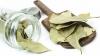 #LifeStyle: Proprietățile terapeutice ale frunzelor de dafin despre care nici nu bănuiai