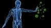 Vei rămâne uimit: Şase lucruri pe care probabil nu le ştiai despre sistemul imunitar