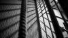 Detalii în cazul reținerilor pentru mită la Vama Otaci: Bănuiții, în izolator pentru 72 de ore