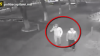 Răufăcători pe străzile Capitalei. Dacă îi recunoaşteţi, sunaţi imediat la Poliţie (VIDEO)