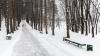 Vine iarna! Săptămâna viitoare vom avea parte de primele ninsori
