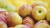 Cea mai sigură şi simplă metoda prin care elimini pesticidele de pe coaja fructelor şi legumelor