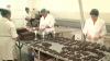 Fructe în ciocolate MADE IN MOLDOVA! Deliciul de pe rafturile magazinelor de peste Prut