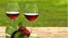Moldova, în topul marilor vinificatori ai lumii. Pe ce loc s-a clasat ţara noastră