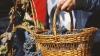 Producţia de vin a României va înregistra cea mai mare creştere din lume