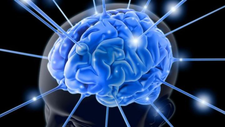 Cum experienţele nefaste din copilărie pot afecta dezvoltarea creierului