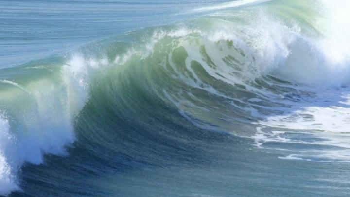 Situație alarmantă! Radiațiile de la Fukushima au contaminat Oceanul Pacific. Ce spun experţii