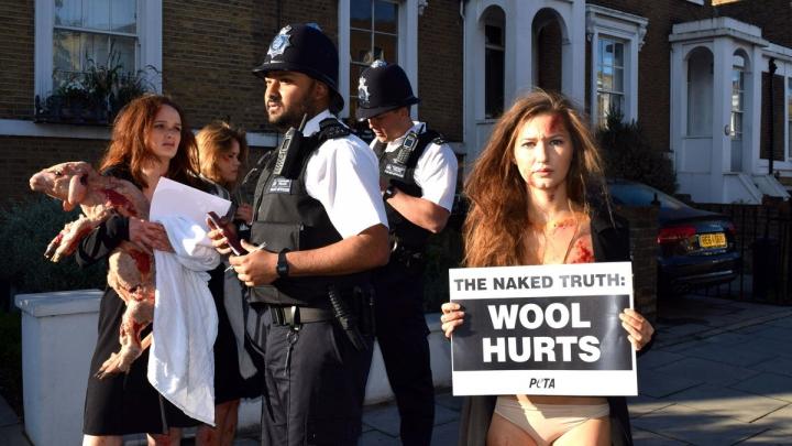 NO COMMENT: Câteva tinere au protestat topless cu un miel în braţe. Care este MOTIVUL (VIDEO)